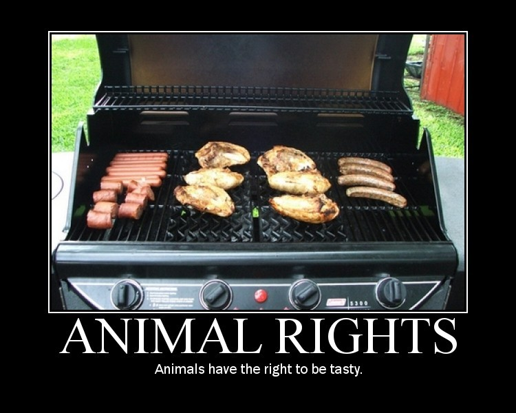 animalrights.jpg