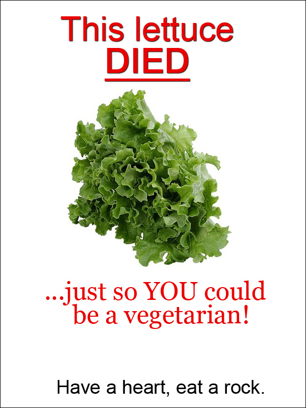 Lettuce Feels Pain Too